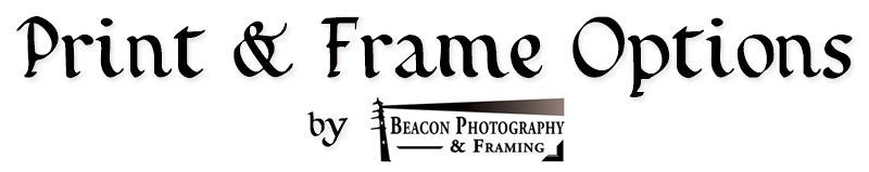 Print & Frame Options